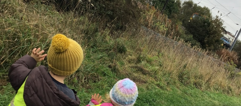 Exploring our local Nature Reserve