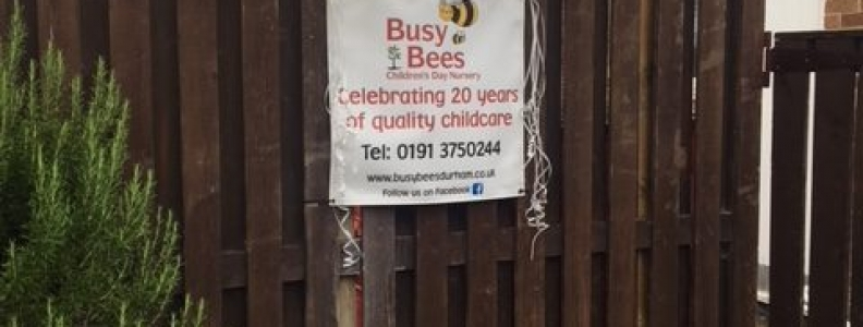 20th Anniversary of Busy Bees