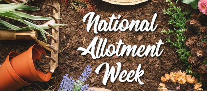 National Allotment Week 2019