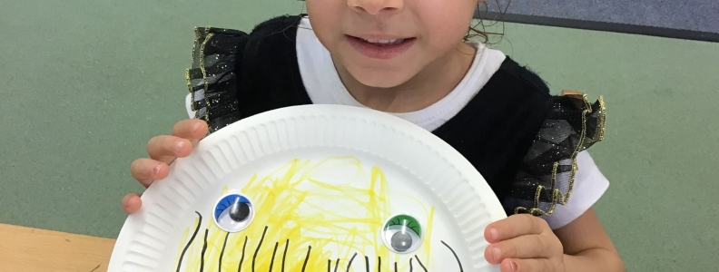 Exploring insects and bugs